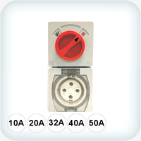 4 Pin Combination Switched Sockets IP66