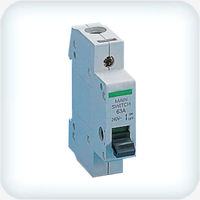 Main Switch Single Pole 80A