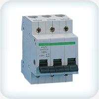 Main Switch Three Pole 100A